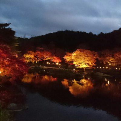 静岡にこんな素敵な場所が!