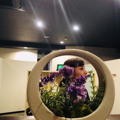 今月の花~greenな駅南店~