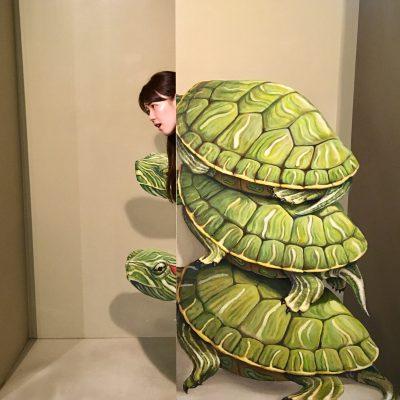 『お首が亀さん!?』