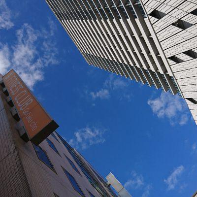 ちこのちいさな日課♪~空を見上げる~