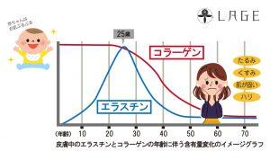 エラコラグラフ