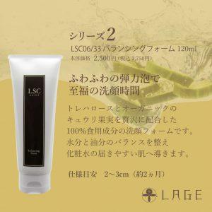 【L】LSC_フォーム2