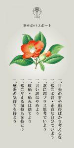 【L】パスポート_山茶花