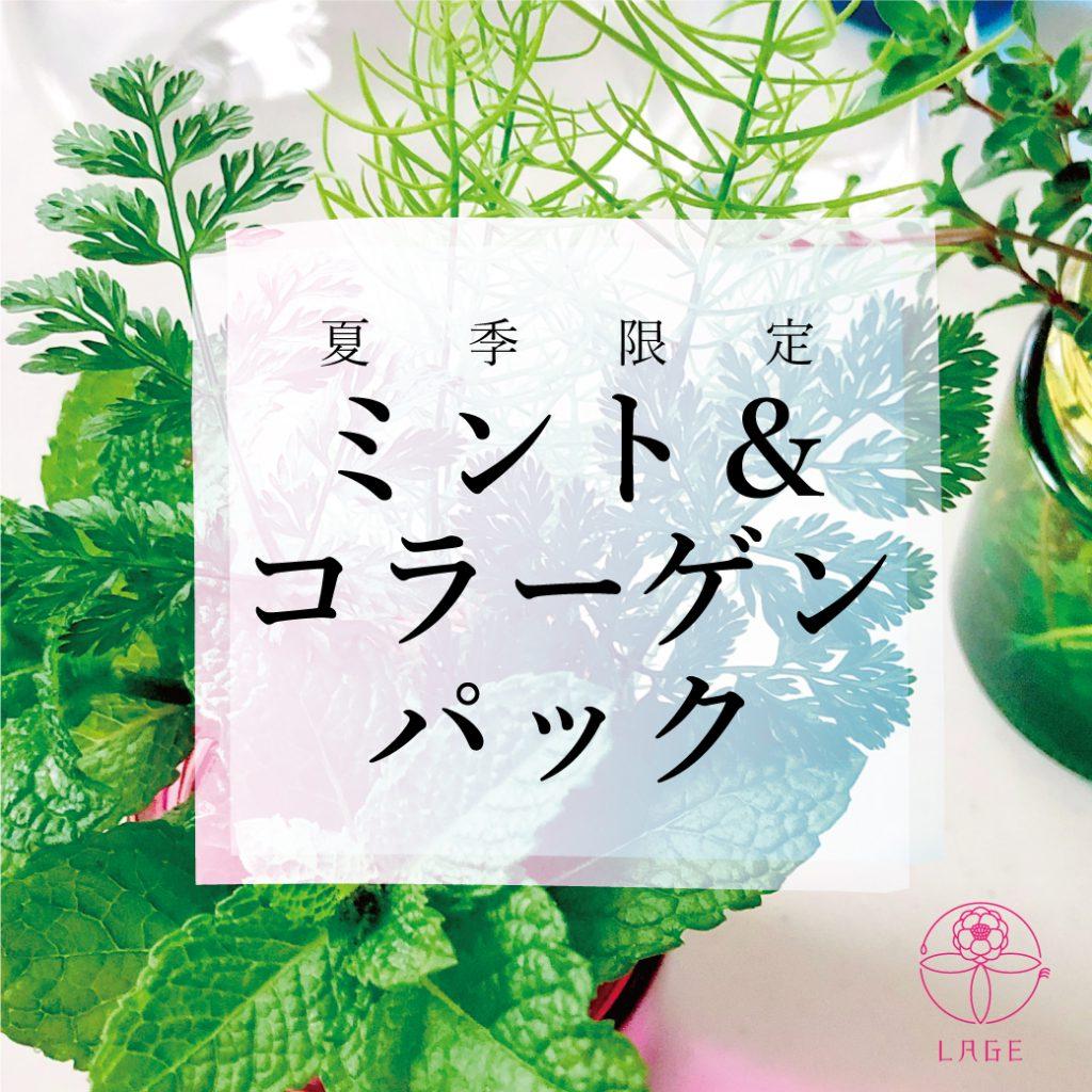 【L】ミンパ2021-4